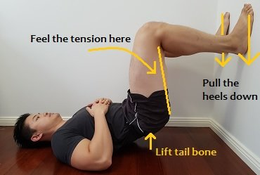 Hamstring strengthening exercise for anterior pelvic tilt
