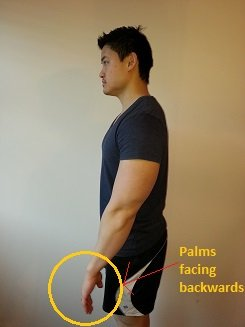 How To Fix Rounded Shoulders Posture Direct