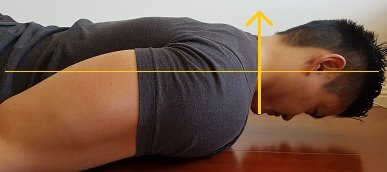 neck retraction against gravity