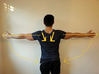 shoulder position reset