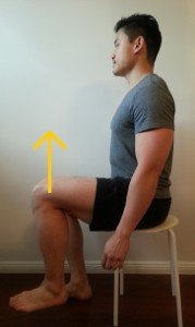 sitting hip flexion