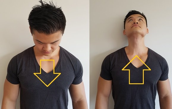 flexion extension neck