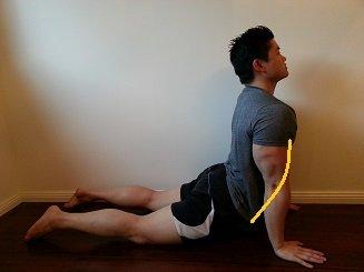 abdominal stretch