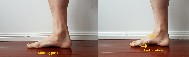 short foot exercise to rebuild arches of flat feet