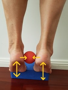 short foot exercise for pes planus