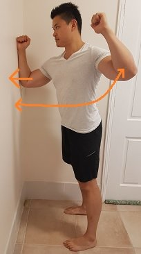exercises for winged scapula