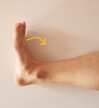 ankle duck feet posture