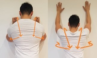 winged scapula exercises serratus anterior