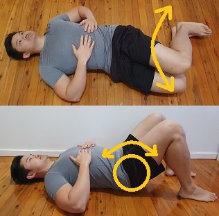 pelvic tilt and lumbar rotations