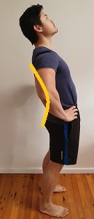standing lumbar spine extension