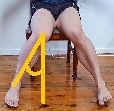 How do you check hip internal rotation in hip flexion