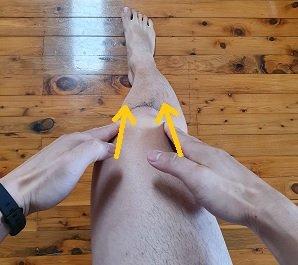 knee myofascial glides