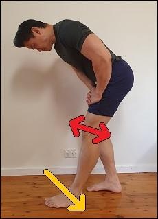 hamstring activation in end range knee extension