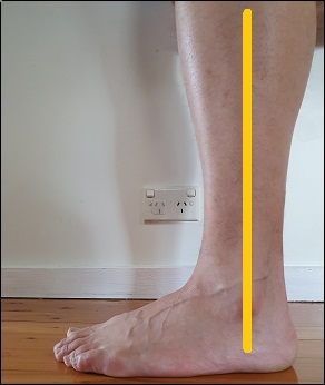 neutral ankle position